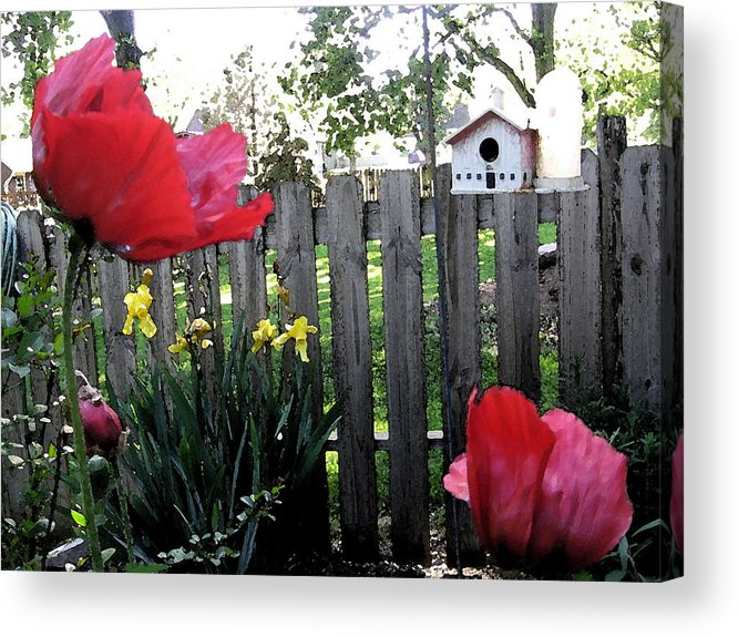Poppy Acrylic Print featuring the painting Southside Poppy Garden by Mary Sonya Conti