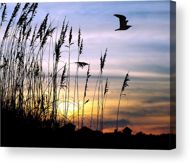 Sunset Acrylic Print featuring the painting St Augustine Beach Sunset by Addison Fitzgerald