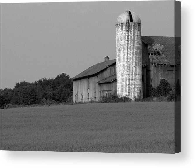 Barn Acrylic Print featuring the photograph Still Here by Rhonda Barrett