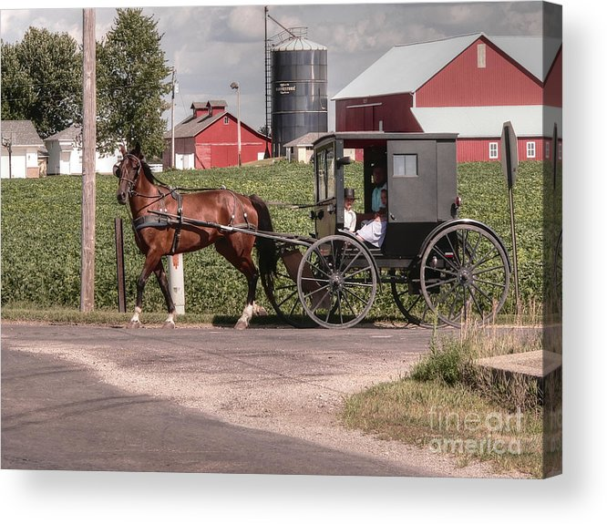 Nappanee Indiana Acrylic Print featuring the photograph Such Grace - Such Serenity by David Bearden