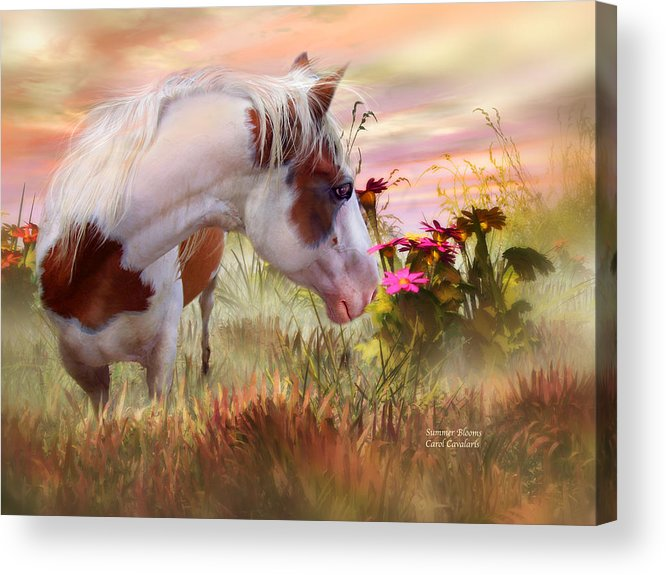 Horse Acrylic Print featuring the mixed media Summer Blooms by Carol Cavalaris