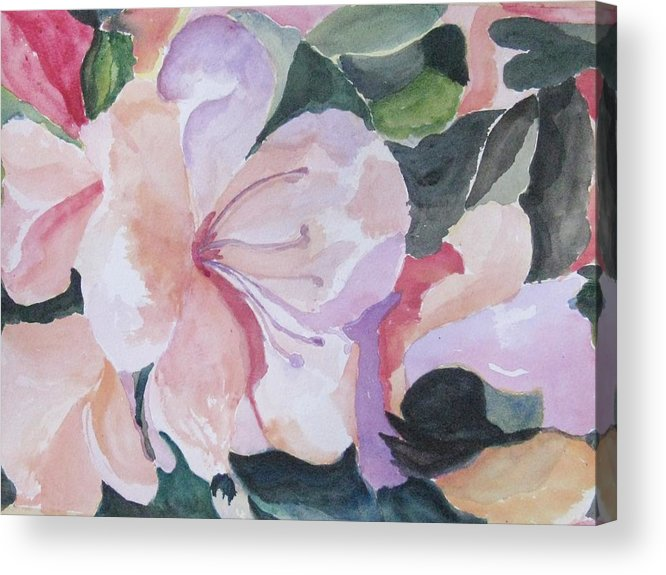 Flower Acrylic Print featuring the painting Summer Delight by Trilby Cole