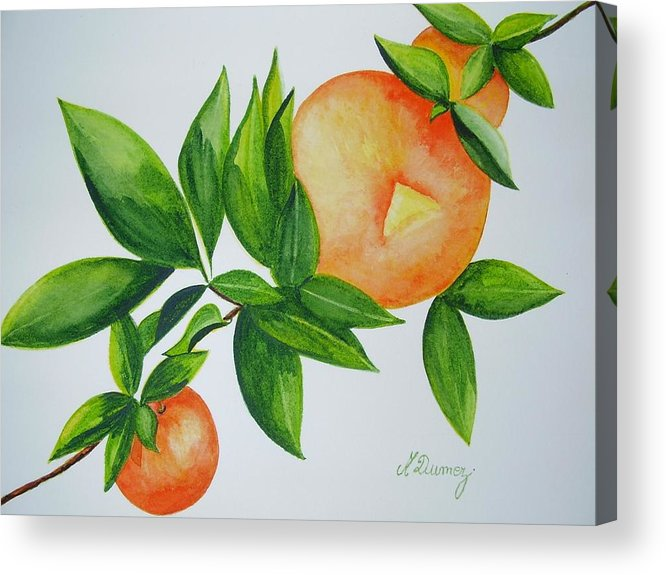Fruits Acrylic Print featuring the painting Sweet by Murielle Hebert
