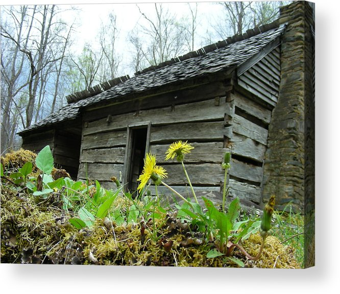 Tennessee Acrylic Print featuring the photograph Tennessee Homestead by Linda Russell