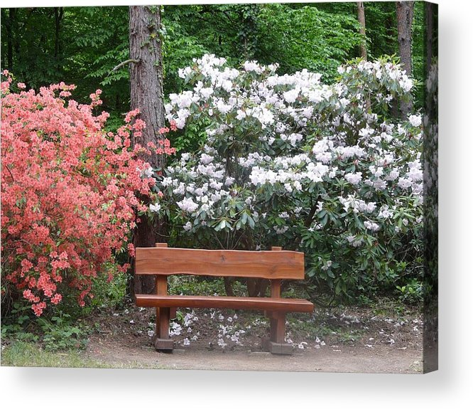 Spring Acrylic Print featuring the photograph The Bench Of Peace And Pleasure by Attila Balazs