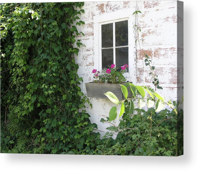 Farm Acrylic Print featuring the photograph The Cottage by Janis Beauchamp