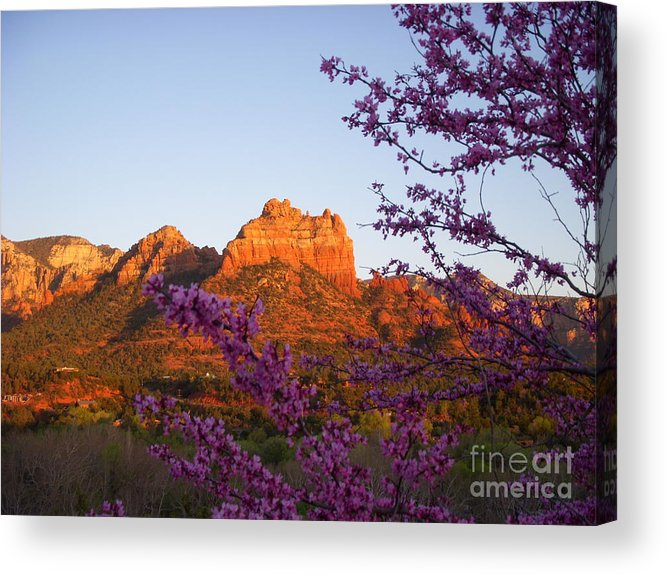 Sedona Acrylic Print featuring the photograph The Light Within by Amy Strong
