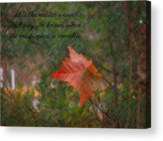 Leaf Acrylic Print featuring the photograph The Master Weaver by Judy Waller