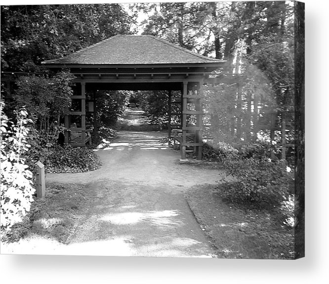 Path Acrylic Print featuring the photograph The Path by Scarlett Royal