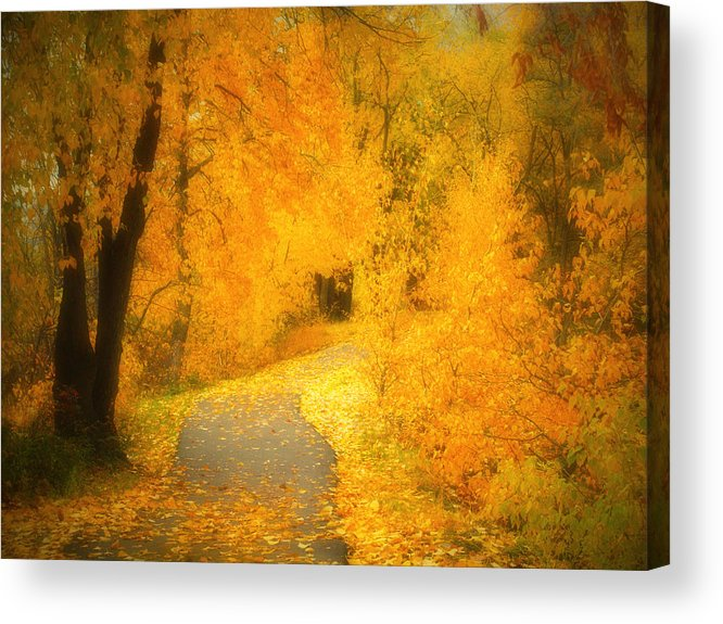 Autumn Acrylic Print featuring the photograph The Pathway Of Fallen Leaves by Tara Turner