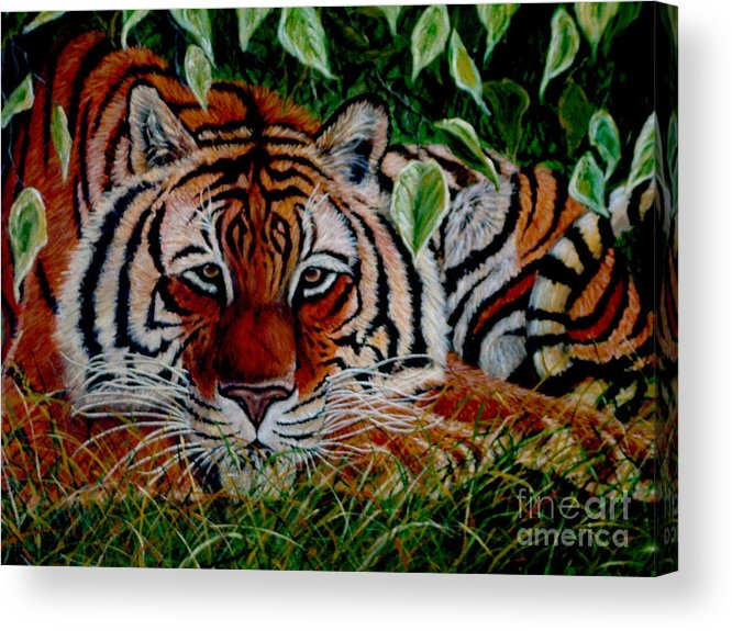 Tiger Acrylic Print featuring the painting Tiger In Jungle by Nick Gustafson