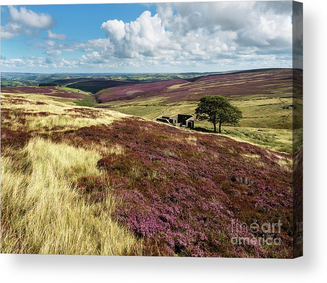 Britain Acrylic Print featuring the photograph Top Withins On Haworth Moor by Mark Sunderland