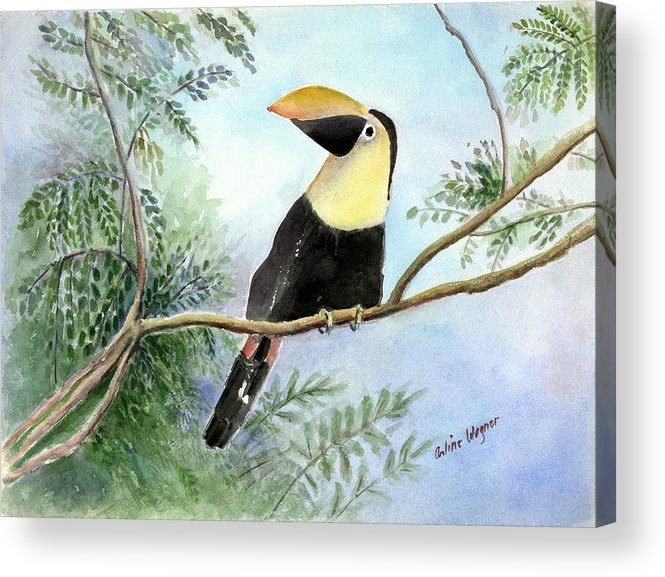 Toucan Acrylic Print featuring the painting Toucan by Arline Wagner