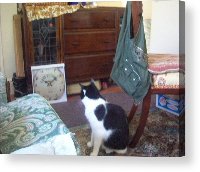 Cat Acrylic Print featuring the painting Treat Time by Judith Desrosiers