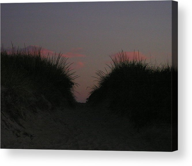 Dunes Acrylic Print featuring the photograph Twin Dunes At Dusk by Donna Davis