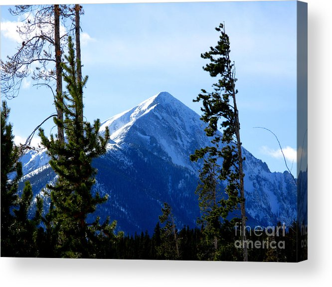 Mountain Acrylic Print featuring the photograph View From The Top by PJ Cloud