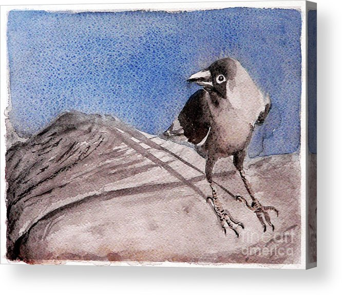 Crow Acrylic Print featuring the painting View by Jasna Dragun