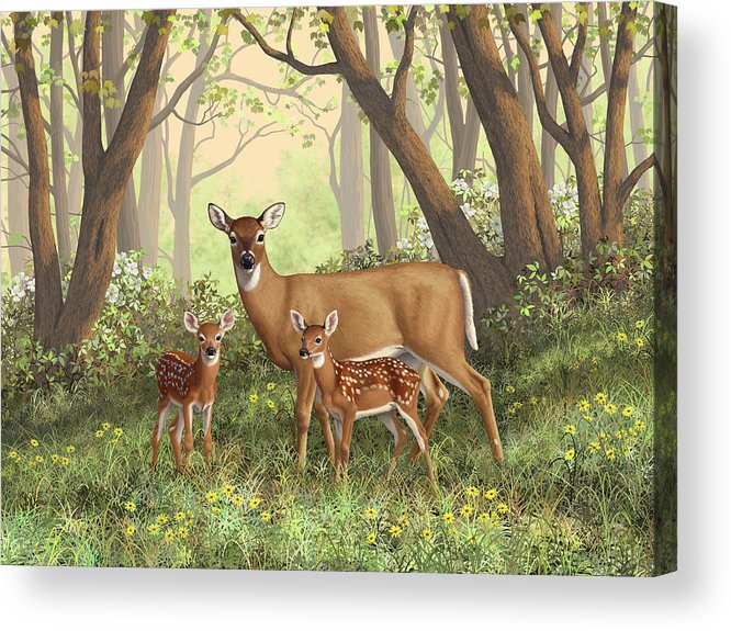 Whitetail Deer Acrylic Print featuring the painting Whitetail Doe And Fawns - Mom's Little Spring Blossoms by Crista Forest