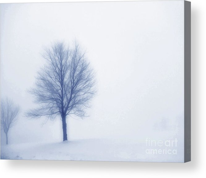 Winter Acrylic Print featuring the digital art Winter Blues by Randy Steele