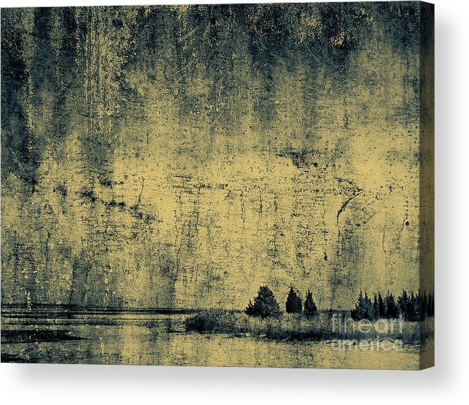 Texture Acrylic Print featuring the photograph Winters Silence by Dana DiPasquale