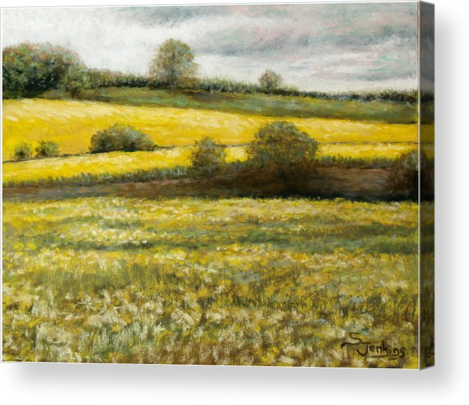 Landscape Acrylic Print featuring the painting Yellow Fields by Susan Jenkins