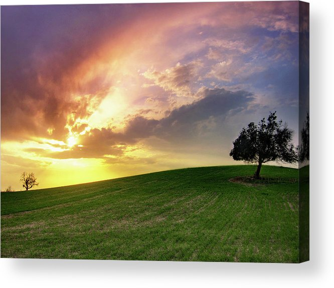 Scenics Acrylic Print featuring the photograph Larnaca Countryside by Constantinos Hinis