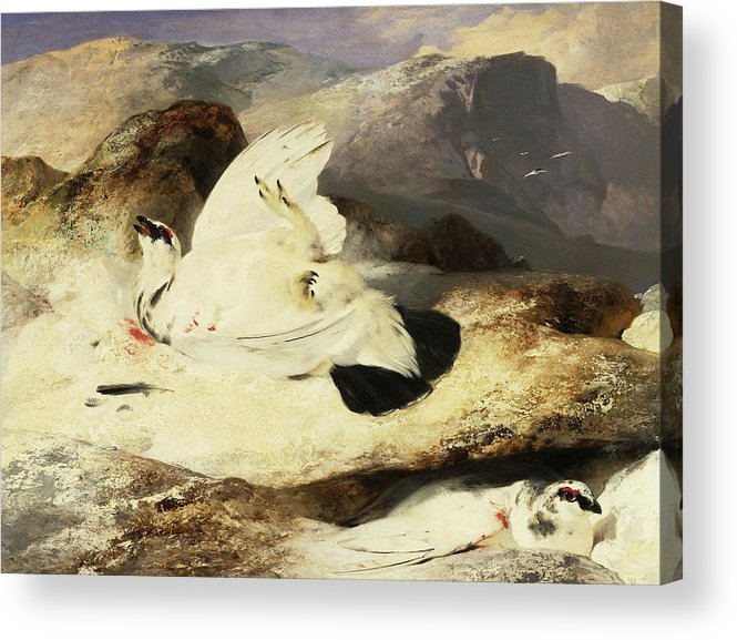 Sir Edwin Henry Landseer Acrylic Print featuring the painting Ptarmigan In A Landscape, 1833 by Sir Edwin Landseer