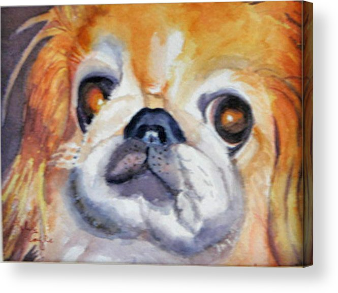 Pet Portrait Acrylic Print featuring the painting Dickens by Libby Cagle