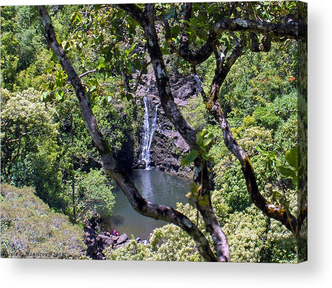Water Fall Acrylic Print featuring the photograph Secluded Falls by Nicole I Hamilton