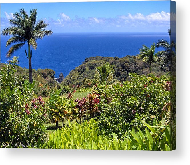Coast Acrylic Print featuring the photograph Untouched by Nicole I Hamilton
