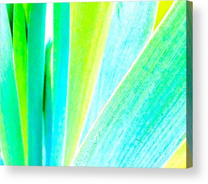 Abstact Acrylic Print featuring the photograph Analogous by Lori Bourgault