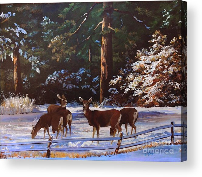 Deer Acrylic Print featuring the painting Backyard Visitors by Suzanne Schaefer