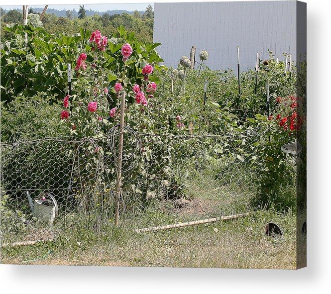 Acrylic Print featuring the photograph Jo Jo's Garden 3 by Liz Santie