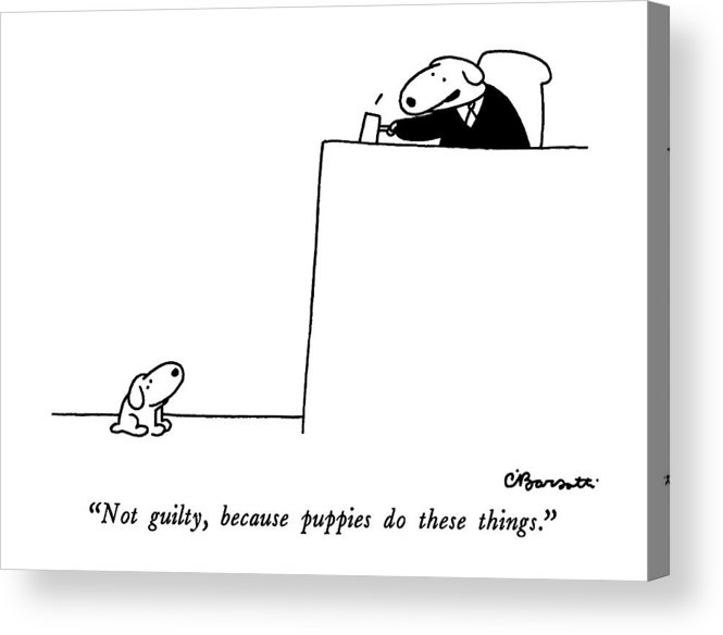 not Guilty Acrylic Print featuring the drawing Not Guilty, Because Puppies Do These Things by Charles Barsotti