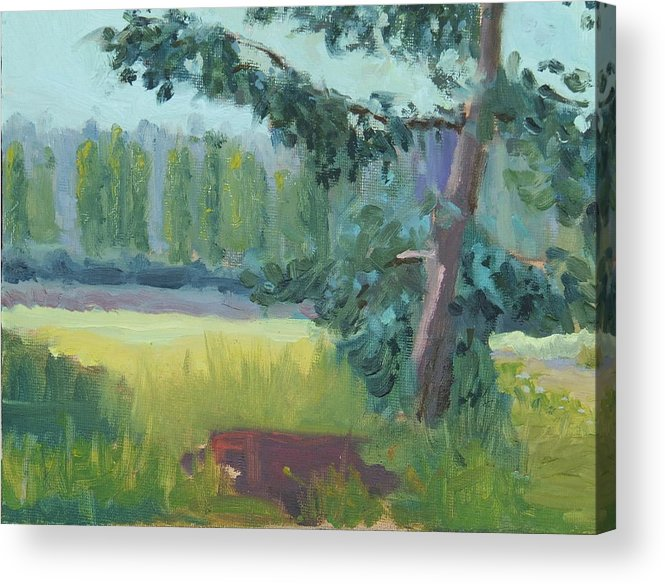 Acrylic Print featuring the painting Olympic Nursery View by Raymond Kaler
