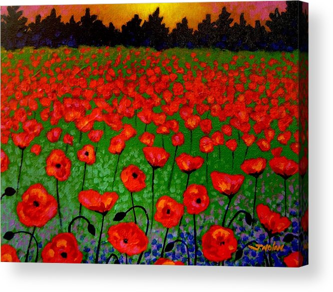 Poppy Acrylic Print featuring the painting Poppy Carpet by John Nolan