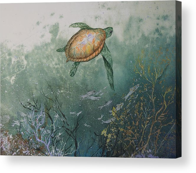 Gyotaku Acrylic Print featuring the mixed media Sea Turtle by Nancy Gorr