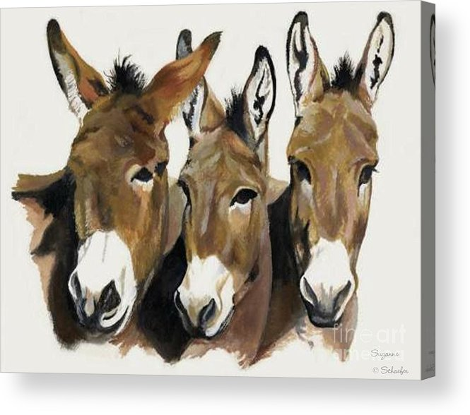 Donkeys Acrylic Print featuring the painting The Brothers Three by Suzanne Schaefer