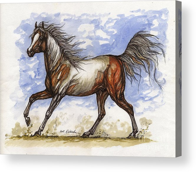 Wild Horse Acrylic Print featuring the painting Wild Mustang by Angel Ciesniarska