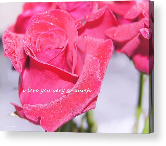 Acrylic Print featuring the photograph Rose For You by Gornganogphatchara Kalapun