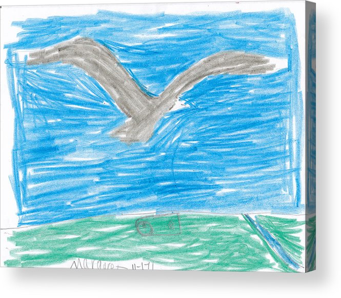 Bald Eagle Acrylic Print featuring the drawing Bald Eagle Flying by Margaret Acker