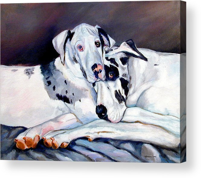 Great Dane Acrylic Print featuring the painting Embrace by Lyn Cook