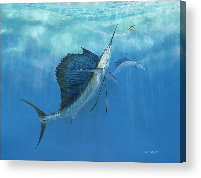 Kevin Brant Acrylic Print featuring the painting Two Of A Kind Sailfish by Kevin Brant