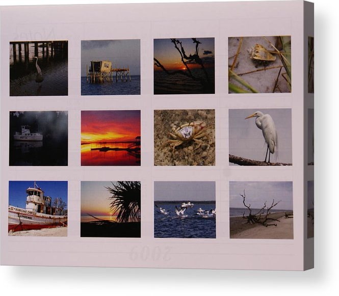 Florida Acrylic Print featuring the photograph 2008 Calendar Back Of Gulf Views Edition by Debbie May