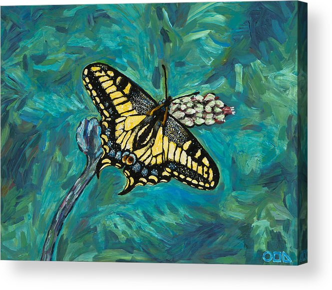 Acrylic Print featuring the painting Anise Swallowtail by Steve Lawton