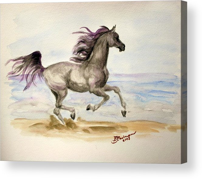 Arabian Acrylic Print featuring the painting Arabian In Wind by BJ Redmond