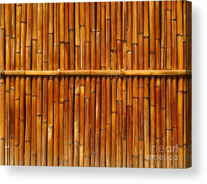 Fence Acrylic Print featuring the photograph Bamboo Fence by Yali Shi