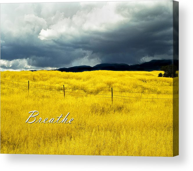 Field Acrylic Print featuring the photograph Breathe by Lou Novick
