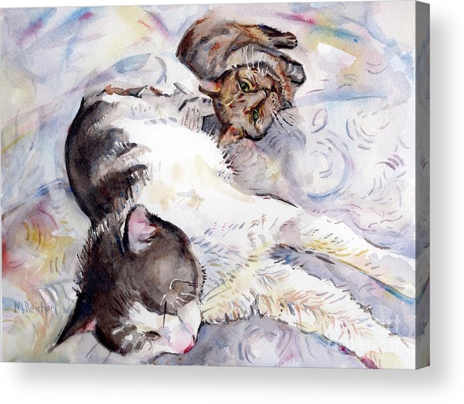 Cat Acrylic Print featuring the painting Cats In Watercolor by Maria Reichert