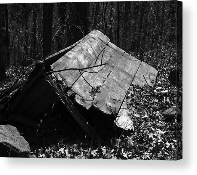 Ansel Adams Acrylic Print featuring the photograph Cindy Outhouse by Curtis J Neeley Jr